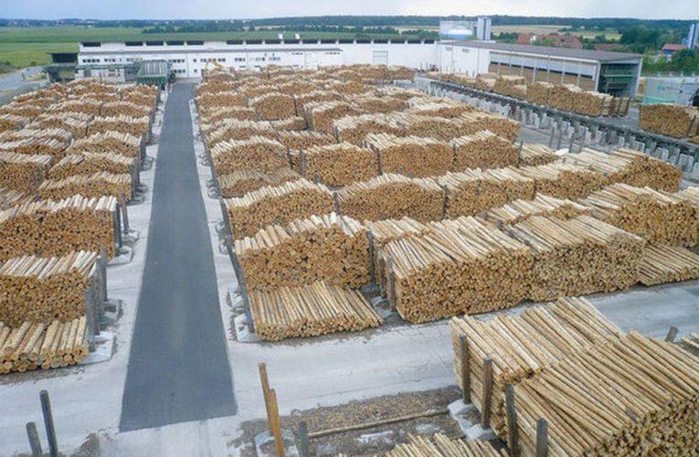 Ludovic Orban: 'România este importator net de masă lemnoasă. Am văzut că e campanie împotriva Schweighofer, care procesează 80% lemn din import'
