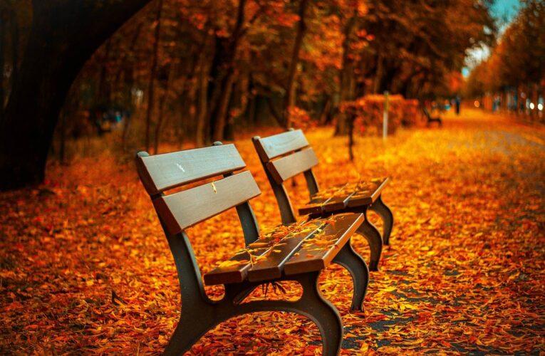 Vremea pe 6 noiembrie. Prognoza meteo pentru București și restul țării
