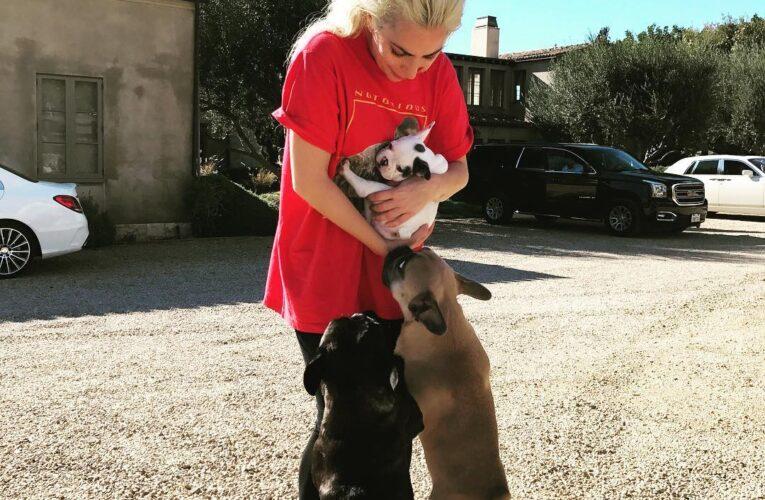 """Tatăl lui Lady Gaga își sprijină moral fiica după ce câinii i-au fost furați: """"E ca și cum ți-ar lua cineva unul dintre copii"""""""